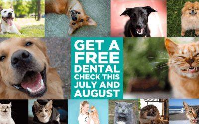 Fur Life Vet Free Dental Check Offer